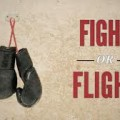 "Guest Blog Post from Fight or Flight Survival: ""Survival of the Fittest"""